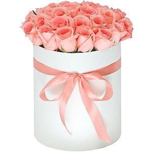 Купить цветы оренбург магазины цветов евпатория доставка цветов на дом