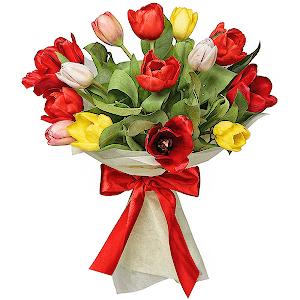 Купить тюльпаны в оренбурге купить комнатные цветы в донецкой области